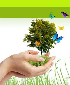 conseiller en naturopathie