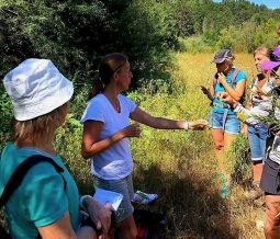 Naturopathe herboriste dans le 73 Savoie à Le Chatelard