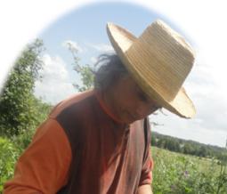 Phytothérapie, aromathérapie, ayurvéda dans le 35 Ille-et-Vilaine à Retiers
