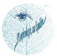 Sophrologie, Psychogénéalogie, La Trame dans le 39 Jura à Dole
