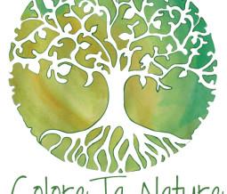 Naturopathe, conseil en lithothérapie et chromothérapie en Belgique à Frasnes