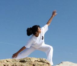 Chi kung, sophrologie, formation gestion du stress dans le 65 Hautes-Pyrénées à Tarbes