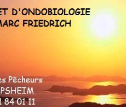 Ondobiologie / Access Bars dans le 67 Bas-Rhin à Lipsheim