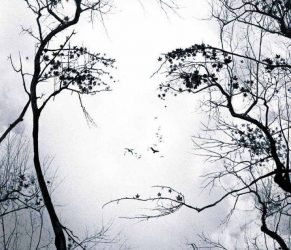 Gestalt-thérapeute, psychothérapie humaniste, Gestalt-Praticien dans le 94 Val-de-Marne à Vincennes