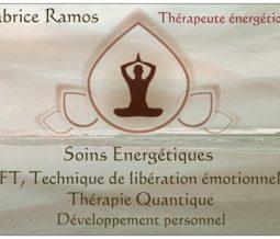 Energéticien psycho énergéticien dans le 78 Yvelines à Magny-les-Hameaux