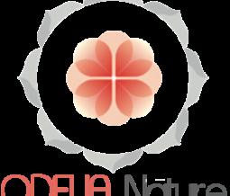 Naturopathe, sophrologue, coach minceur dans le 94 Val-de-Marne à Maisons-Alfort