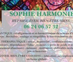 """Hypnologue, soins sonore et vibratoire, """"enlumineuse""""/conseil bien-être dans le 63 Puy-de-Dôme à Saint-Germain-Lembron"""