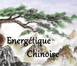 Praticienne en médecine traditionnelle chinoise dans le 73 Savoie à Jarrier