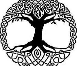 Thérapeute holistique, professeur de kundalini yoga, Massothérapeute dans le 35 Ille-et-Vilaine à Fougères