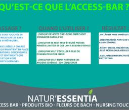 Formation access bars dans le 82 à La Ville-Dieu-du-Temple (et partout en France)