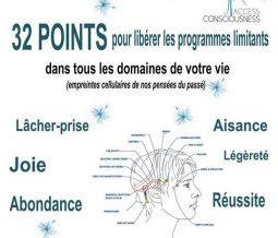 Formation access bars dans le 31 à Colomiers (et partout en France)