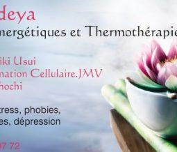 Energéticienne, thermothérapie, ré-information cellulaire.jmv dans le 69 Rhône à Lyon