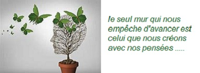 Psychologue thérapies brèves, EMDR, TCC, PNL dans le 11 Aude à Narbonne