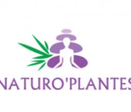 Conseillère en alimentation saine, Éducatrice de Santé Naturelle dans le 40 Landes à Geloux