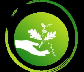 Naturopathie, réflexologie plantaire dans le 71 Saône-et-Loire à Charnay-lès-Mâcon