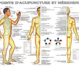 Acupression, Qi gong, Tuina, Diétothérapie dans le 06 Alpes-Maritimes à Antibes