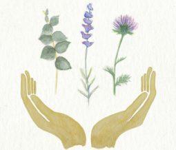 Naturopathe, Réflexologue plantaire, Auriculothérapeute, Sympathicothérapeute dans le 74 Haute-Savoie à Allonzier-la-Caille
