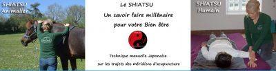 Shiatsu reiki énergéticienne dans le 16 Charente à Feuillade