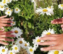 Reiki, massage énergétique, guidance psy dans le 77 Seine-et-Marne à Serris