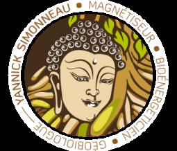 Magnétiseur bioénergéticien géobiologue dans le 38 Isère à Meylan