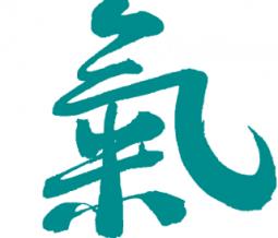 Médecine Traditionnelle Chinoise, Massage Tui Na dans le 53 Mayenne à Laval