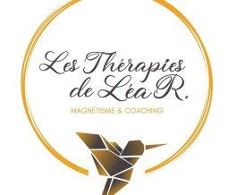 Magnétiseur, lithothérapie, coach dans le 72 Sarthe à Tennie
