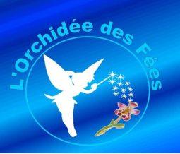 Médecine Traditionnelle Chinoise, Conseillère en Fleurs de Bach, Coach en épanouissement dans le 971 la Guadeloupe à Le Moule