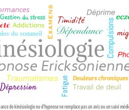 Kinésiologue, hypnose ericksonienne, fleurs de bach, brain gym dans le 84 Vaucluse à Maubec
