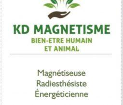 Magnétiseur, Radiesthésiste, énergéticien dans le 41 Loir-et-Cher à Suèvres
