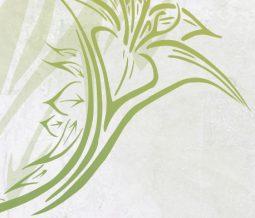 Naturopathie phytothérapie gemmothérapie florithérapie nutrition dans le 46 Lot à Saint-Céré