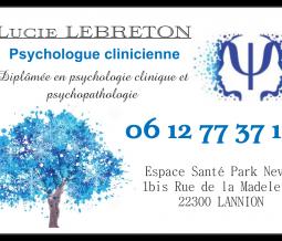 Psychologue, psychothérapeute, neuropsychologue dans le 22 Côtes d'Armor à Lannion