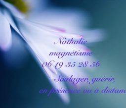 Thérapie énergétique et magnétisme dans le 56 Morbihan à Vannes