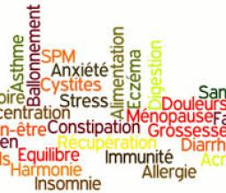 massage naturiste haute normandie Issy-les-Moulineaux